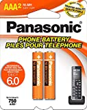 Panasonic Original Ni-MH Rechargeable Battery for the