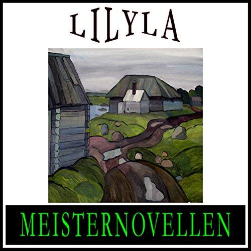 Meisternovellen 16 audiobook cover art