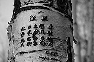 Home Comforts Peel-n-Stick Poster of Tree Engraved Trunk Poetry Words Vivid Imagery Poster 24 x 16 Adhesive Sticker Poster Print