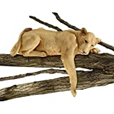 Design Toscano DB383070 Lioness of Namibia Garden Wall Animal Statue, 29 Inch, Polyresin, Full Color