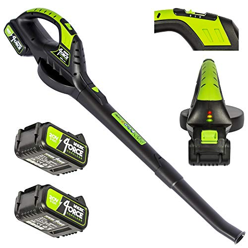 MYLEK Cordless Leaf Blower With 2 x 20V Li-ion 4000mAh Battery & Fast Charger - Two Speed - Battery Indicator LED - Lightweight Handheld For Leaves, Wood Chips, Garden Debris, Grass Cuttings