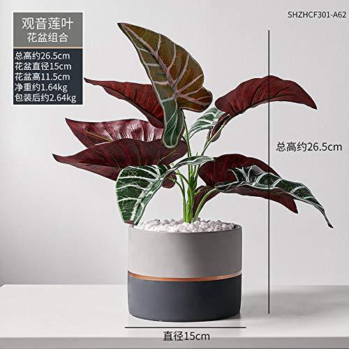 maceta bonsai ikea