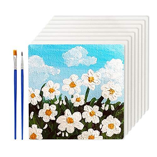 SwirlColor Leinwand zum Bemalen 10x10 Weiße Leere Leinwand zum Zeichnen 8 Stück, mit Pinsel 2 Stück