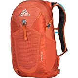 Gregory Mountain Products Men's Inertia 20 H2O Day Hiking Backpack