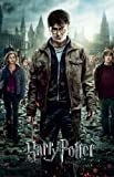 Laminiert Harry Potter The End is Coming! and the Deathly