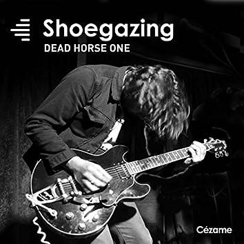 Shoegazing (Dead Horse One)