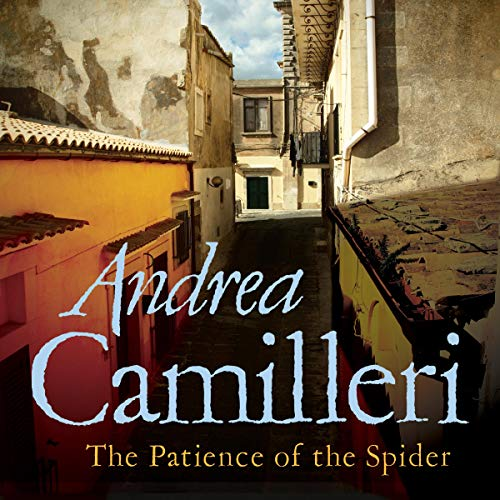 The Patience of the Spider Titelbild