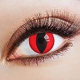 aricona Farblinsen Farbige Katzenaugen Kontaktlinsen Cat In Red -Deckende Jahreslinsen für dunkle und helle Augenfarben ohne Stärke,Farblinsen für Karneval,Fasching,Motto-Partys und Halloween Kostüme
