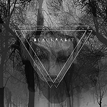 Blackrabit