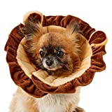 Alfie Pet - Noah Recovery Collar (for Dogs and Cats) - Pattern: Lion, Size: XS