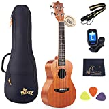 WINZZ Mahogany Hawaii Ukulele Uke for Beginners Kids Adults with Full Kit, 23 Inches Concert
