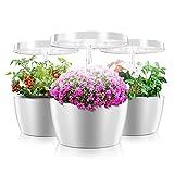 CRZJ Smart Garden, Kit de Sistema de Cultivo de hidroponía de Interior Kit de Hierba de Interior: Kit de Maceta de nutrientes hidropónicos de Interior, 4 macetas
