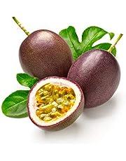 M-Tech Gardens Rare Passion fruit Exotic Varieties   (Kavery Passion-Fruit)