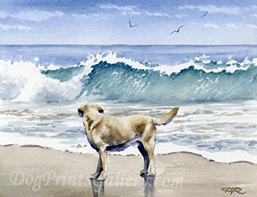 Labrador Retriever at The Beach Watercolor Art Print by Artist DJ Rogers