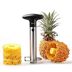 pineapple and coring tool