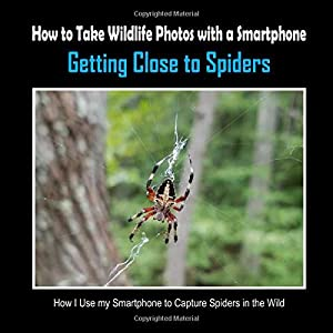 Getting Close to Spiders: How I Use My Smartphone to Capture Spiders in the Wild (How to Take Wildlife Photos with a Smartphone)