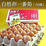 水郷のとりやさん 平飼いの鶏卵 放し飼い自然卵 『一番鶏』 50個詰 (40個+破損保障……