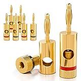 deleyCON 8X Banana Plug 24K Bañado en Oro y Atornillable para Amplificadores de Cajas de Cable...