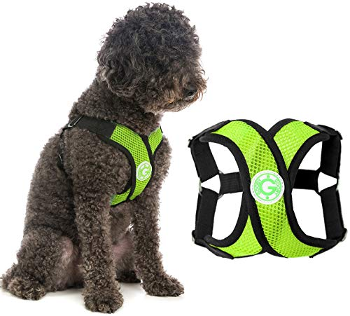 Gooby Dog Harness - Green, Small - Comfort X...