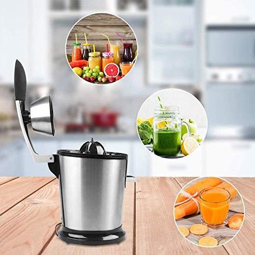 Juicer, Juicer Machine, RVS Elektrische Sapcentrifuge 160W Fruitpers Fresh Juice