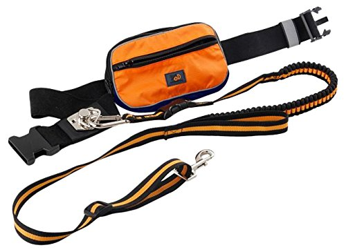 All For Paws jogginggordel met outdoor tas, oranje