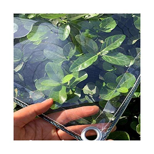 LXHONG Lonas Plegables, Lonas De PVC Resistentes, Red De Jardín De Sombra para Cubiertas De Plantas Piscina 450 G, Personalizable (Color : Claro, Size : 3x6m)