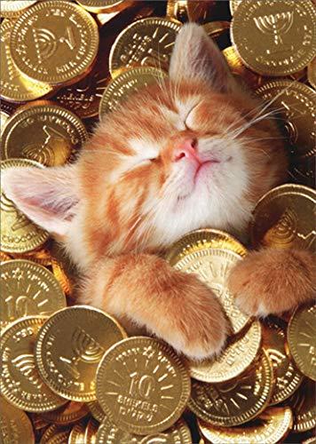 Kitten with Gold Coins Avanti Cute Cat Hanukkah Card