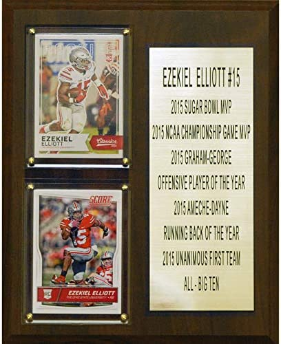 C I Collectables NCAA Ohio State Buckeyes Men s Ezekiel Elliott Two Card Stat Plaque Brown 8 product image