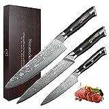 Sunnecko Juego de Cuchillos de Cocina Profesional Cuchillo Cocina de 20 cm, Cuchillo de Carnicero de 20 cm, un Cuchillo Multifuncional de 12,7 cm, Acero de Damasco Gyuto Cuchillo Chef -Serie clásica