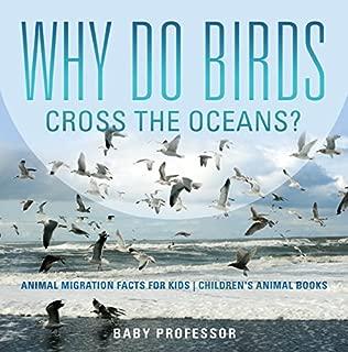 Why Do Birds Cross the Oceans? Animal Migration Facts for Kids   Children's Animal Books