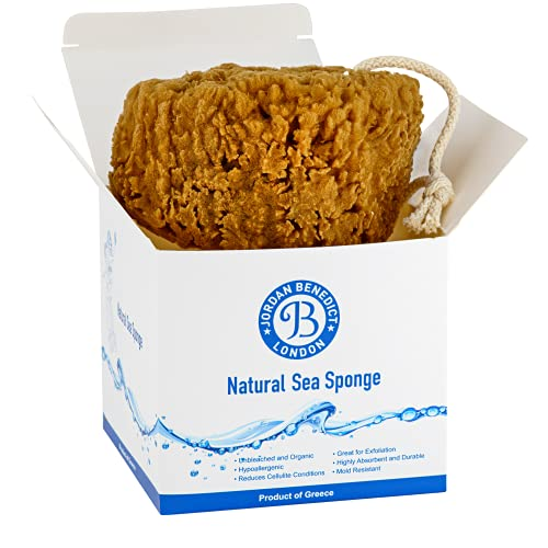 Jordan Benedict Natural Sea Sponge - Unbleached Natural Grass Sea Sponge for Bathing, Shower, Exfoliating, make-up for for babies, children and adults