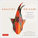 Amazing Origami Kit Traditional Japanese Foldings Papers and Projects /anglais: Traditional Japanese Folding Papers and Projects [144 Origami Papers with Book, 17 Projects]