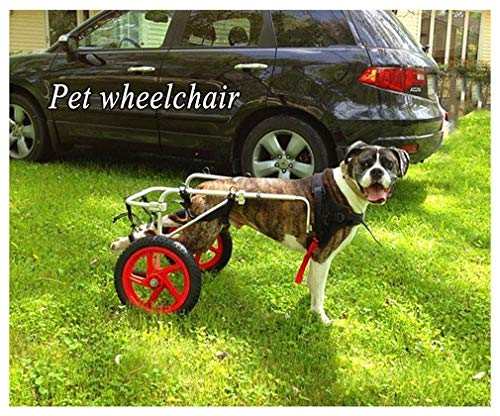 Silla de Ruedas para Perros,Ciclomotor Scooter para Mascota,Adecuado para Perro Discapacitado Paralizada Patas Traseras Rehabilitación Del Caminar Asistido,Ajustable,2 Ruedas,1kg(2.2lb)-50kg(1