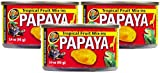 Zoo Med 3 Pack of Tropical Fruit Mix-ins Papaya Reptile Food, 3.4-Ounces Each