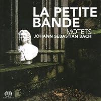 Bach: Motets / Kuijken by BUCHNER / SWEELINCK / BERTOLI (2006-11-14)