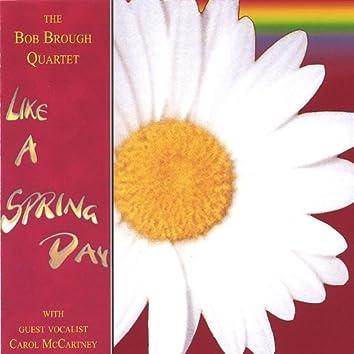 Like a Spring Day (Featuring Carol Mccartney)