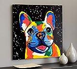 AQjept DIY Pintar por números Bulldog francés Kit de Pintura acrílica de Bricolaje para niños y Adultos Principiantes