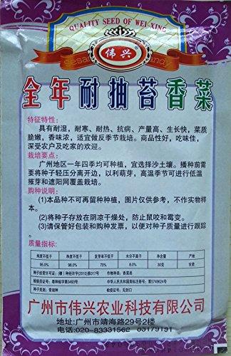 lanterne chinoise Sweet Seeds champignons Nouvelle arrivée Graines Bonsai fruits bio pour Home Garden 40 particules / sac Y019