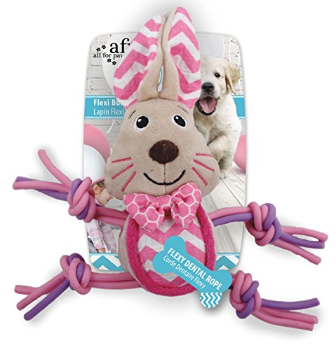 ALL FOR PAWS AFP4207 Jouet pour Chiots Little Buddy Lapin