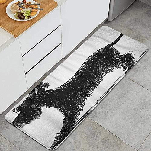 ELIENONO Alfombrillas de Cocina Antideslizantes Lavables,Animal Perro Negro Schnauzer pequeño Barba Gigante Canino Doméstico,Felpudos Cocina Dormitorio Baño Alfombrilla de Poliéster