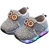 Zapato para niños con luces LED para bebés, niños y niñas, lona suave, transpirable, para ocio (tamaño 25EU, color: C-gris)