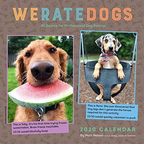 WeRateDogs 2020 Square Wall Calendar