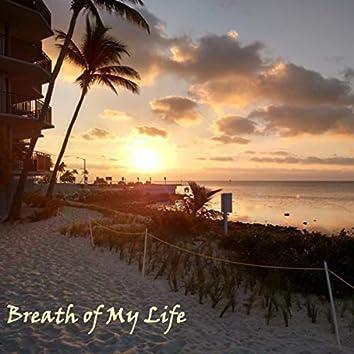 Breath of My Life