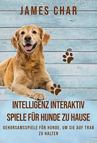INTELLIGENZ INTERAKTIV SPIELE FÜR HUNDE ZU HAUSE: Gehorsamsspiele Für Hunde, Um Sie Auf Trab Zu Halten