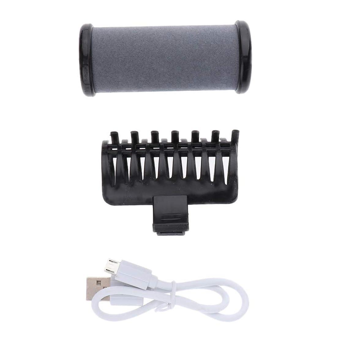スキャン衰える忌み嫌うP Prettyia ヘアローラークリップ ヘアカーラー USB式 2色選べ - ブラック