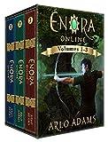 Enora Online Boxed Set: Volumes 1-3: A LitRPG GameLit Fantasy Adventure (Enora Boxed Book 1) (English Edition)