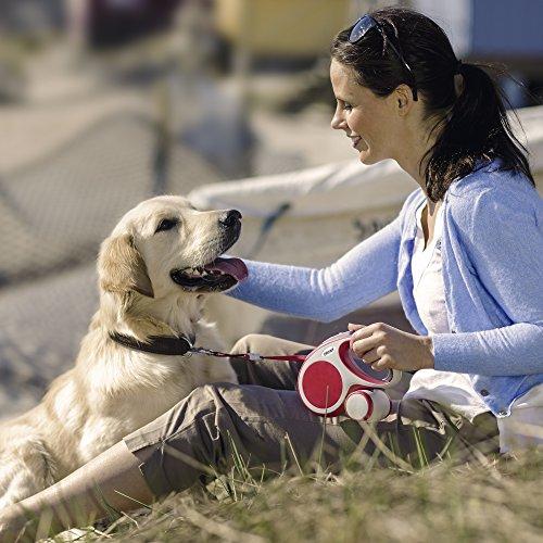 flexi Roll-Leine Vario L Gurt 8 m anthrazit für Hunde bis max. 50 kg - 5