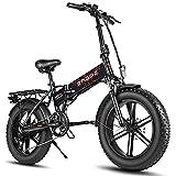 Fafrees Bicicleta Eléctrica Plegable 750W 20 Pulgadas 48 V/12,8 Ah Bikes 150kg Bicicleta Electrica Montaña neumáticos de Nieve 4.0 Pulgadas, Carga de suspensión Trasera de 100kg para Adulto - Negro