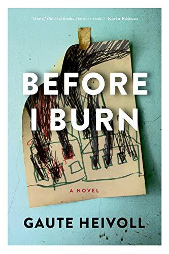 Image of Before I Burn: A Novel (Lannan Translation Selection (Graywolf Hardcover))