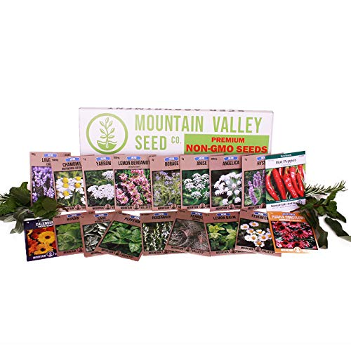 Medicinal & Herbal Tea Garden Seed Collection - Premium Assortment - 18 Non-GMO Herb Seed Packets: Angelica, Borage, Cayenne, Burdock, Lavender, Peppermint, & More